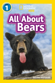 All About Bears : Level 1, Paperback / softback Book
