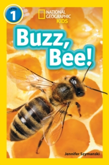 Buzz, Bee! : Level 1