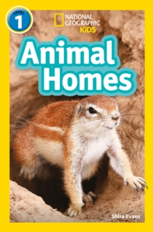 Animal Homes : Level 1