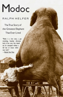 Modoc : The True Story of the Greatest Elephant That Ever Lived, Paperback / softback Book