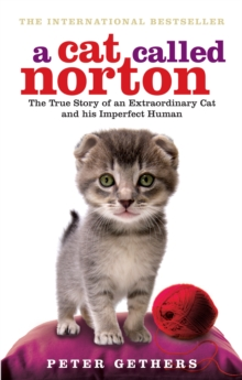 A Cat Called Norton, Paperback Book