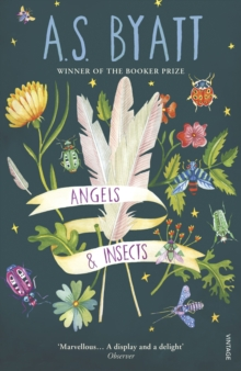 Angels and Insects, Paperback Book