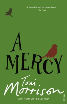 A Mercy, Paperback Book