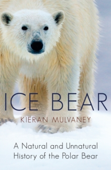 Ice Bear : A Natural and Unnatural History of the Polar Bear, Paperback Book