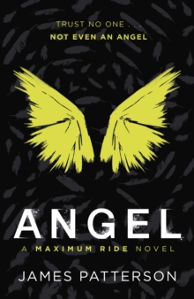 Maximum Ride: Angel, Paperback Book