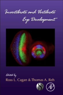 Invertebrate and Vertebrate Eye Development : Volume 93, Hardback Book