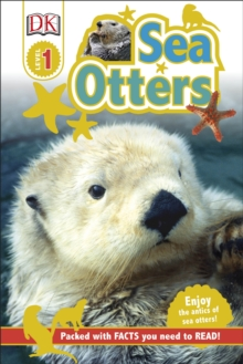 Sea Otters, Hardback Book