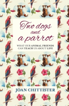 Two Dogs and a Parrot : What Our Animal Friends Can Teach Us About Life, Paperback / softback Book