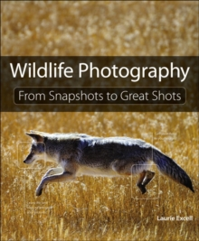 Wildlife Photography : From Snapshots to Great Shots, Paperback / softback Book