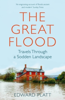 The Great Flood : Travels Through a Sodden Landscape, Paperback / softback Book