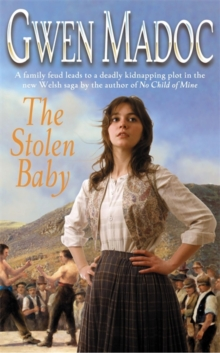 The Stolen Baby, Paperback Book