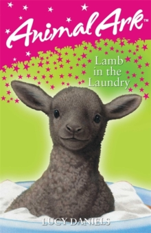Animal Ark: Lamb in the Laundry, Paperback Book