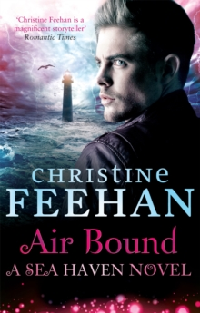 Air Bound, Paperback Book