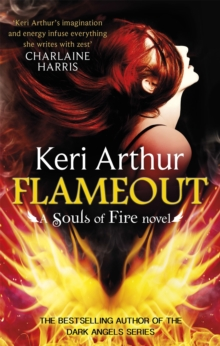 Flameout, Paperback Book