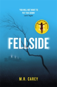 Fellside, Hardback Book