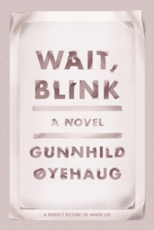 Wait, Blink : A Perfect Picture of Inner Life, Hardback Book
