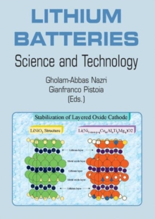 Lithium Batteries : Science and Technology, Paperback / softback Book