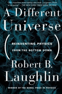 A Different Universe : Reinventing Physics from the Bottom Down, Paperback Book