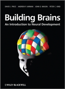 Building Brains : An Introduction to Neural Development, Hardback Book