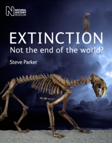 Extinction : Not the End of the World?, Paperback Book