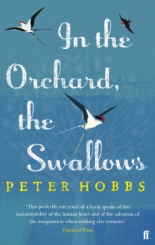 In the Orchard, the Swallows, Paperback Book