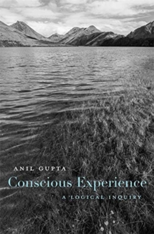 Conscious Experience : A Logical Inquiry, Hardback Book