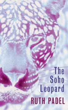 The Soho Leopard, Paperback Book