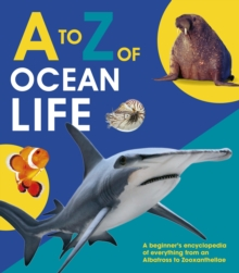A to Z of Ocean Life