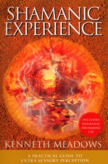 Shamanic Experience, Paperback Book