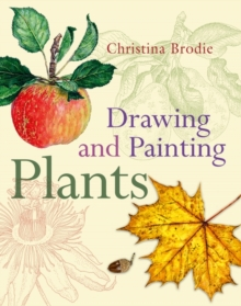 Drawing and Painting Plants, Paperback Book