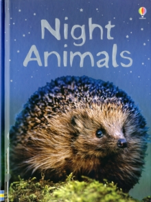 Night Animals, Hardback Book