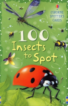 100 Insects to Spot, Cards Book