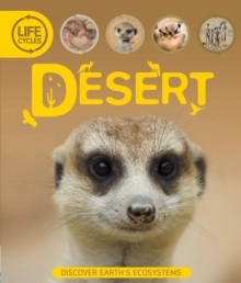 Life Cycles: Desert, Paperback Book
