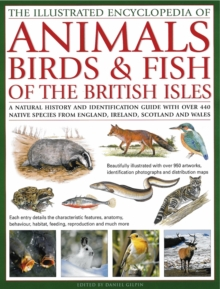 The Illustrated Encyclopedia of  Animals, Birds & Fish of the British Isles : A Natural History and Identification  Guide with Over 440 Native Species from  England, Ireland, Scotland and Wales, Hardback Book