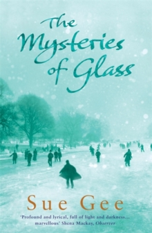 The Mysteries of Glass, Paperback Book