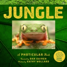Jungle, Hardback Book