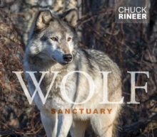 Wolf Sanctuary: The Wolves of Speedwell Forge, Hardback Book