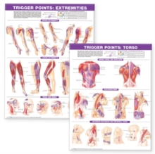 Trigger Point Chart Set: Torso & Extremities Paper, Wallchart Book