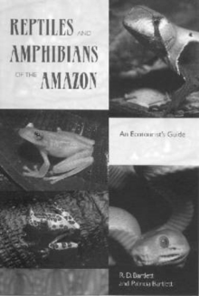 Reptiles and Amphibians of the Amazon : An Ecotourist's Guide, Paperback / softback Book