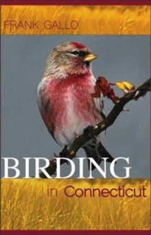 Birding in Connecticut, Paperback / softback Book