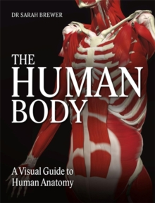 The Human Body : A Visual Guide to Human Anatomy, Hardback Book