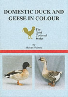 Domestic Duck and Geese in Colour, Paperback Book