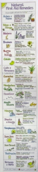 Natural First Aid Remedies Chart, Wallchart Book