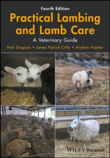 Practical Lambing and Lamb Care : A Veterinary Guide, Paperback / softback Book