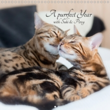A Purrfect Year with Suki & Percy 2018 : Beautiful Photos of Two Lovely Bengals, Calendar Book