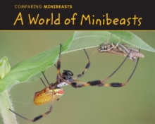 A World of Minibeasts, Paperback Book