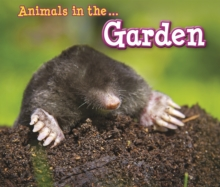 Animals in the Garden, Paperback Book