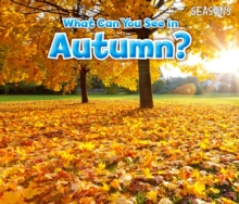 What Can You See In Autumn?, Paperback / softback Book
