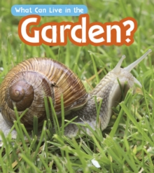 What Can Live in a Garden?, Hardback Book