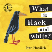 What Is Black and White?, Board book Book